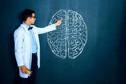Tout savoir du cerveau