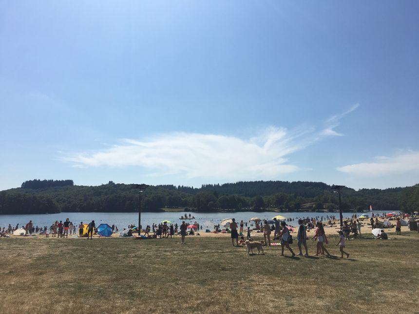 Désormais l'herbe a pris une apprence similaire à celle du sable de la plage au lac de  Saint-Pardoux en Haute-Vienne
