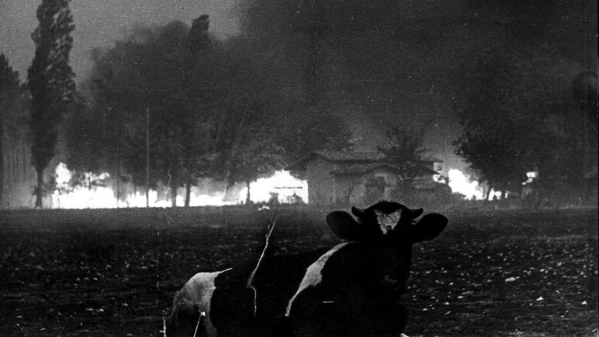 """Photo d'archives de """"l'incendie du siècle"""" en 1949"""