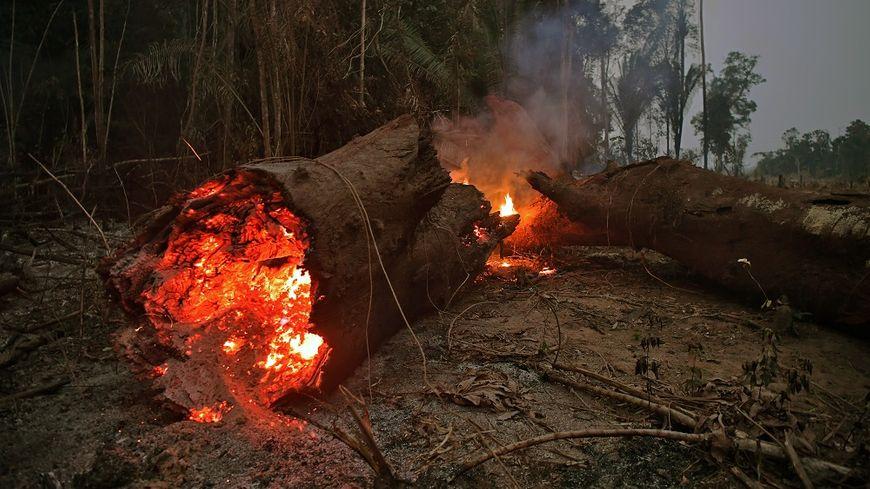 Un incendie près d'Abuna, dans l'état de Rondonia au Brésil, le 24 août.