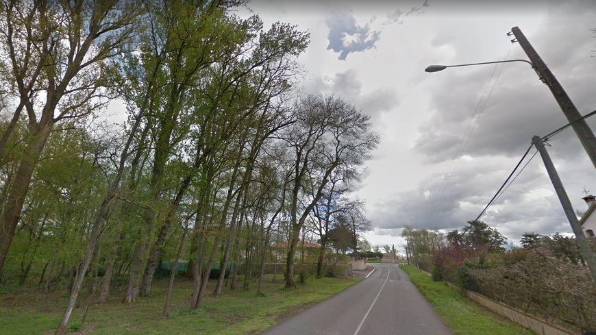 La voiture a percuté un arbre sur la départementale 22 au bord du Tarn à Bondigoux