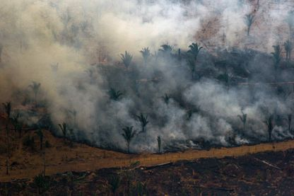 L'un des multiples incendies en cours dans la province brésilienne d'Amazonie, à Boca do Acre