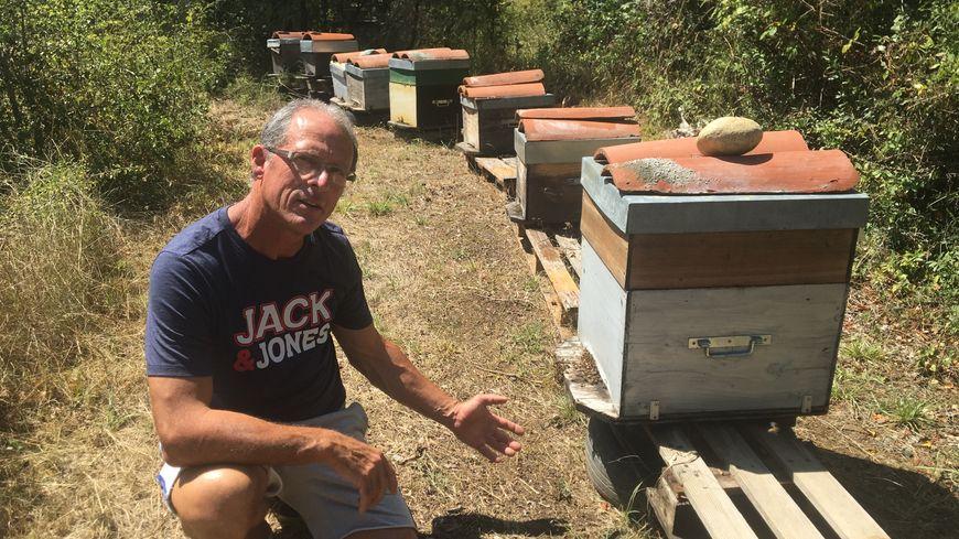 Depuis qu'il a commencé l'apiculture, en 2003, Patrick Bergé doit lutter contre maladies, pesticides et prédateurs qui déciment ses ruches