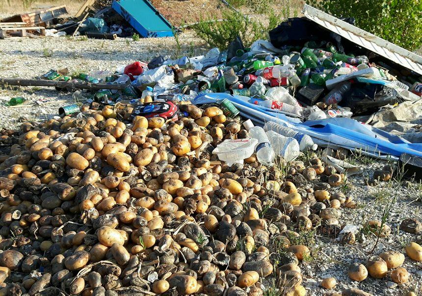 Des centaines de kilos de légumes et de fruits...