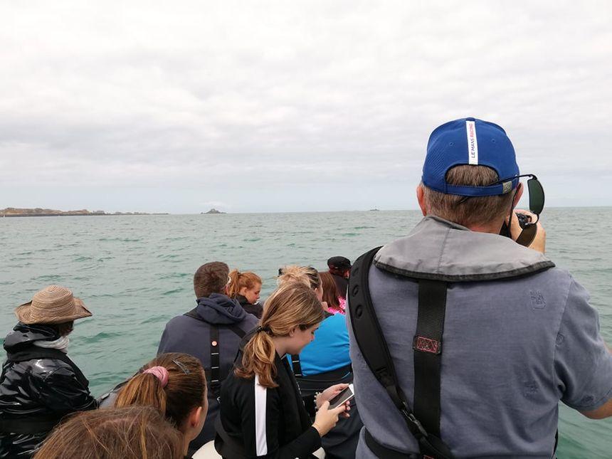 Il faut faire preuve de patience pour apercevoir et photographier un dauphin
