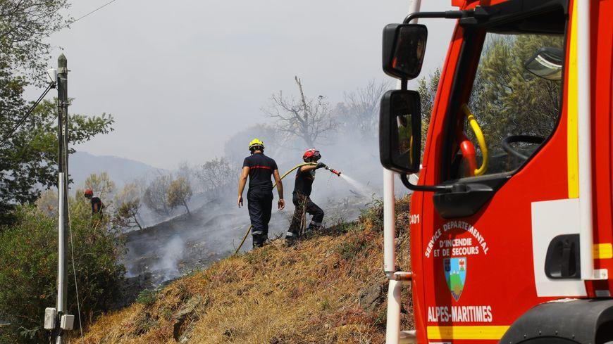 Image d'illustration d'un feu de broussailles dans les Alpes-Maritimes. Ici, dans le massif de la Croix des Gardes à Cannes.