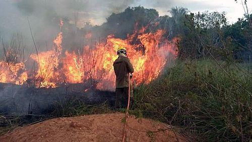 Pompiers et militaires arrivent en renfort à l'ouest du Brésil pour lutter contre les incendies de la forêt amazonienne