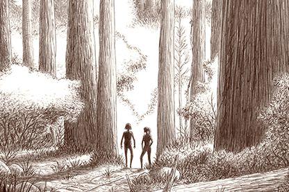 """Détail de la couverture de """"Dans la forêt"""" de Lomig, BD adaptée du roman de Jean Hegland"""