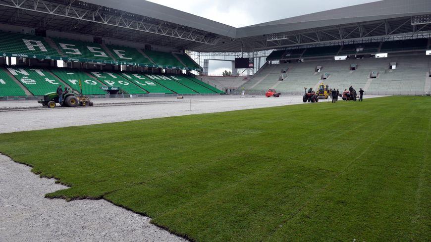 La pelouse du stade Geoffroy Guichard a été rénovée cet été