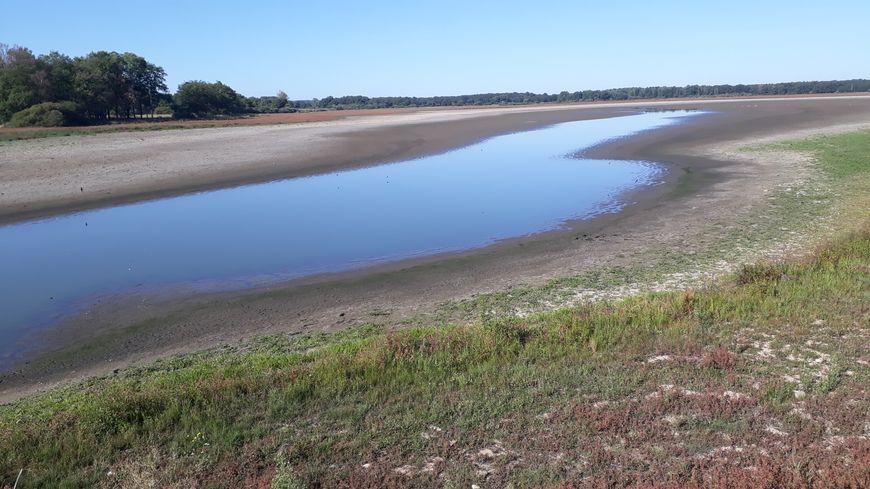on cherche l'eau au milieu des 102 hectares de l'étang des landes
