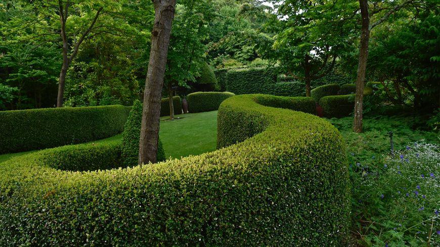L'art de la sculpture végétale