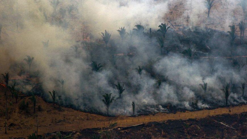 Les feux ravagent l'Amazonie depuis le début de l'été.