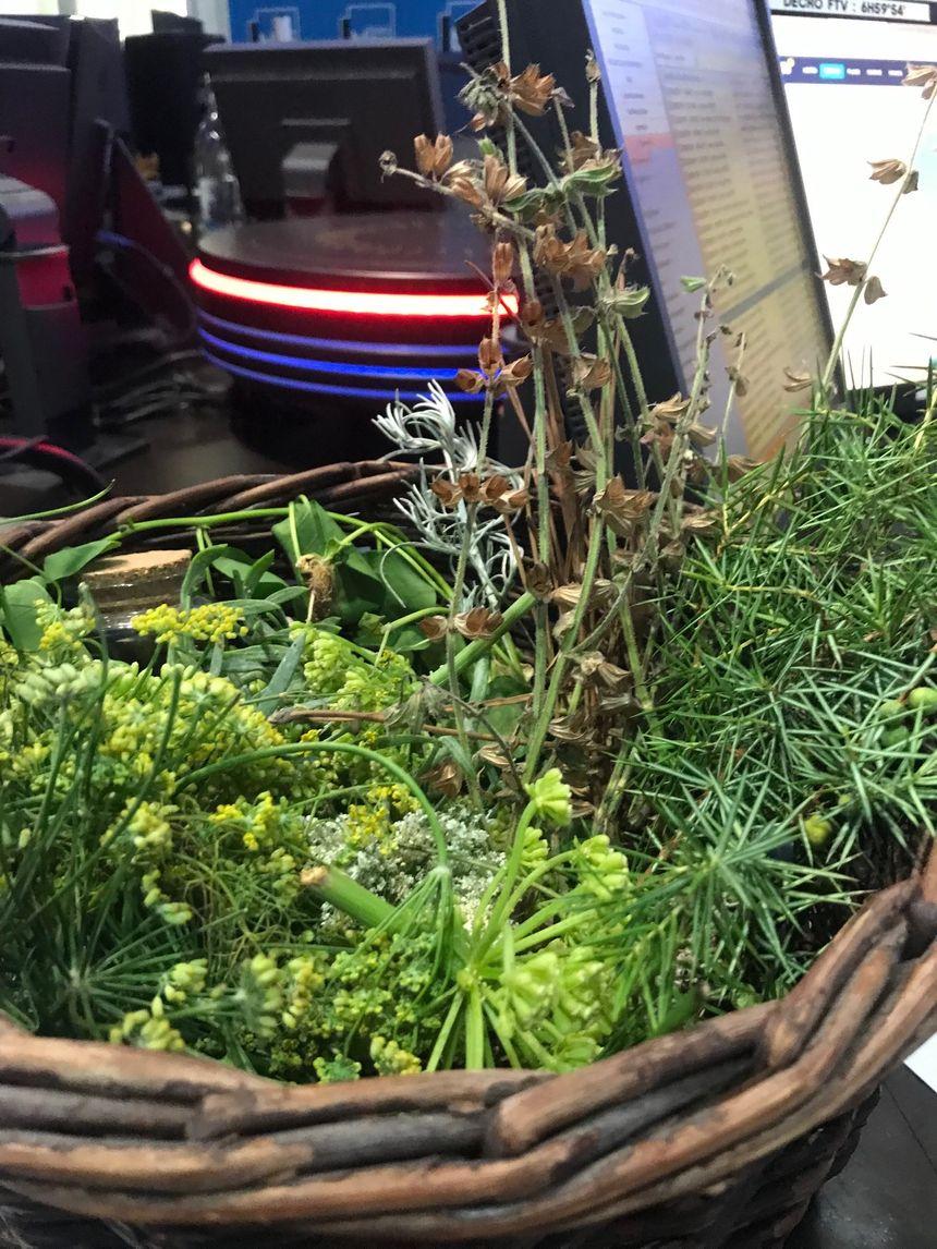 Un panier d'herbes et de plantes pour arômatiser les mets