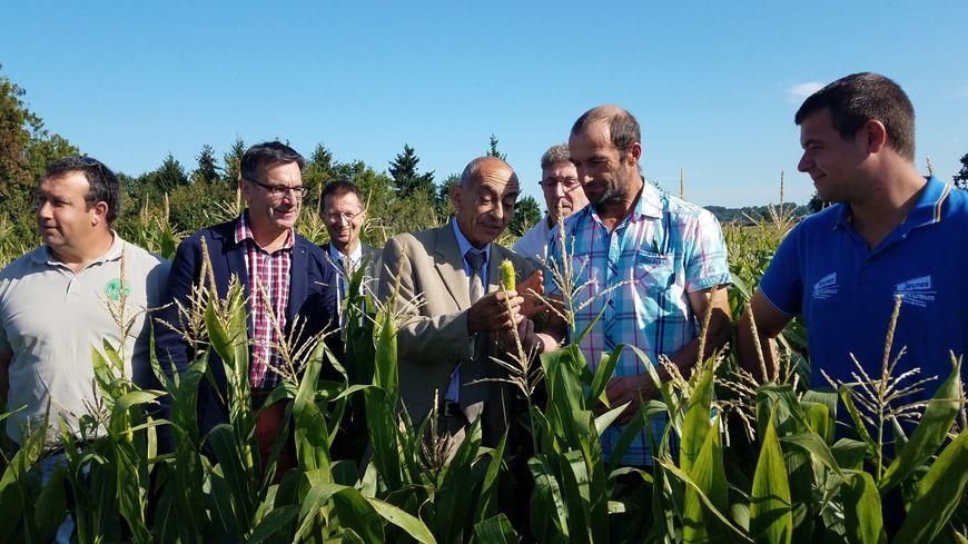 Stéphane et Antoine Leffray ont reçu le préfet et le directeur départemental des territoires dans leur champ de maïs sinistré.