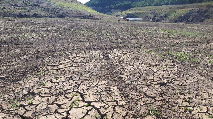 Le sol craquelé du barrage de la Sep à Saint-Hilaire-la-Croix. Au fond, le peu d'eau encore retenu.