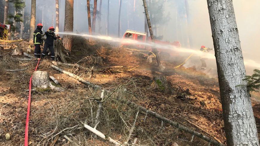 Incendie dans la forêt de Haselbourg, le 26 août dernier