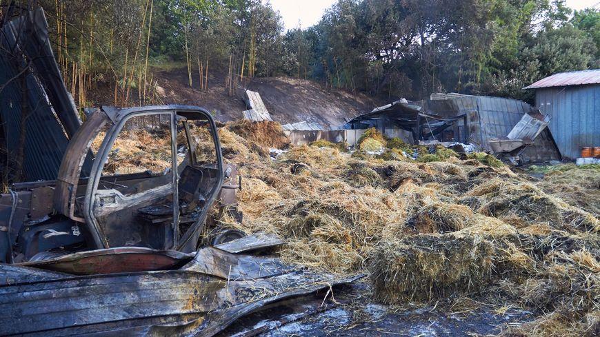 Les dégâts de l'incendie d'un hangar au zoo de La Palmyre ce vendredi matin