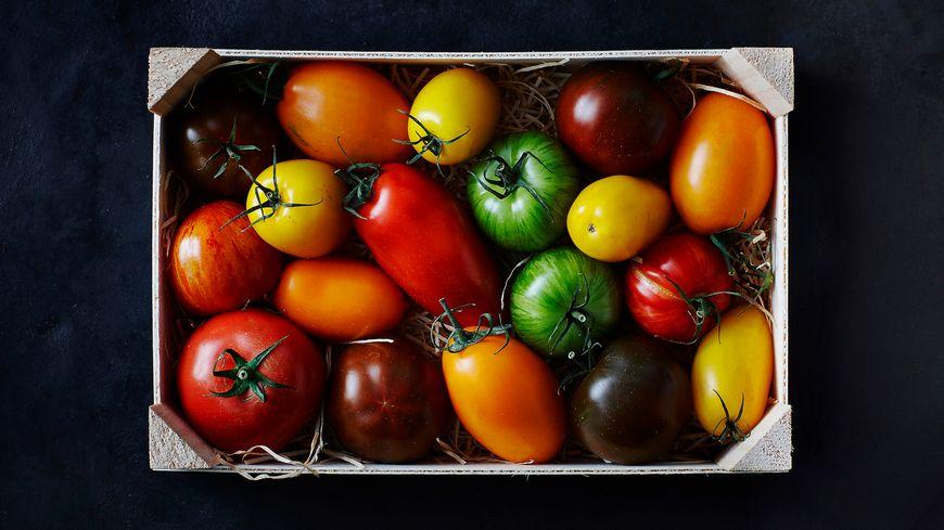 Tomates de variétés anciennes