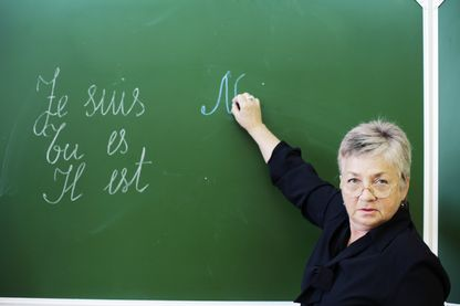 La langue française et les linguistes