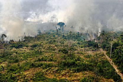 Urgence Climatique : la fin du monde en 2030 ?