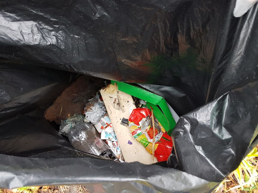 """Quelques minutes après le début du """"clean challenge"""", les jeunes de Sartrouville (Yvelines) ont ramassé pas mal de déchets..."""