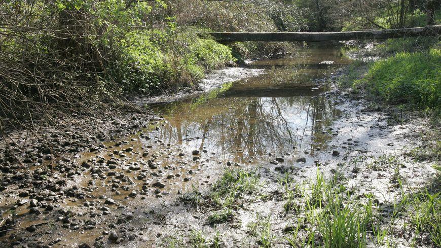La situation hydrologique des affluents de l'Échez empire depuis plusieurs semaines.