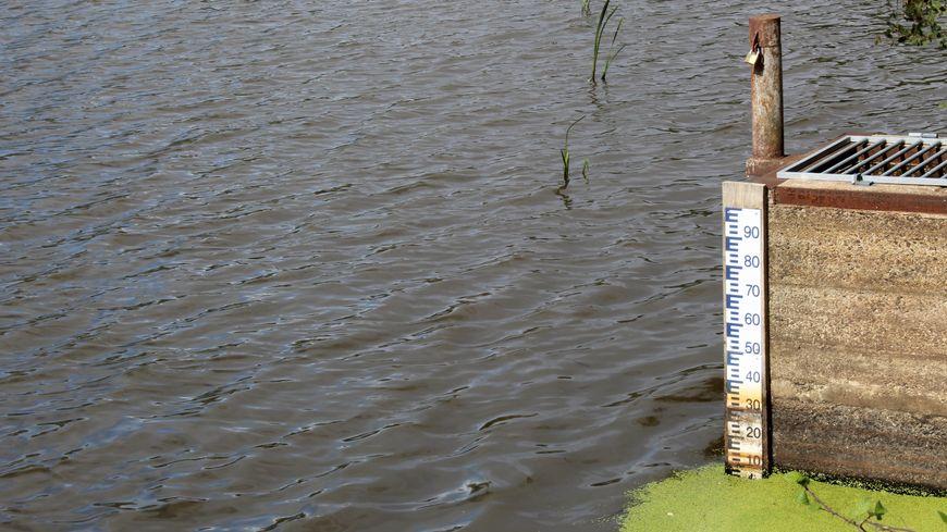 Le niveau de l'étang Massé est descendu bien plus bas qu'habituellement en été