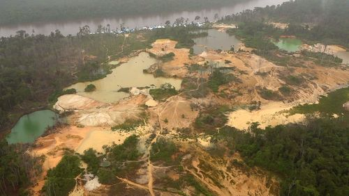 Bolsonaro: l'Amazonie en ligne de mire