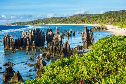 Sur l'île de Nauru, l'un des plus petits Etats du monde avec 14 000 habitants
