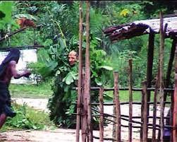 Capture écran de la vidéo filmée par Julien Bonhomme en 2002 au Gabon.
