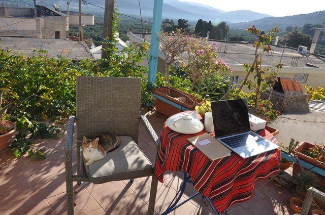 Lorsqu'elle a commence à écrire 'Le Feuilleton d'Artémis', Murielle Szac a vu s'installer sur une chaise, en face de sa table de travail, une petite chatte tigrée
