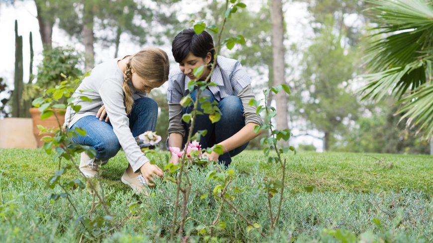 L'Escape Game, une autre manière de découvrir les plantes aux Jardins Panoramiques à Limeuil