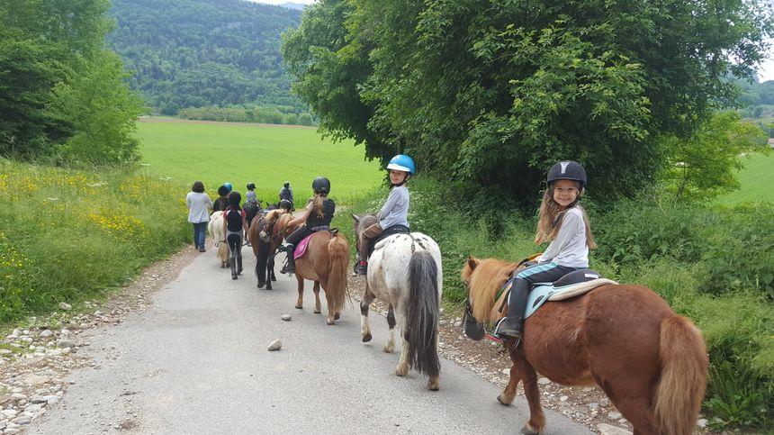 Balade à poneys pour les enfants - stage équestre