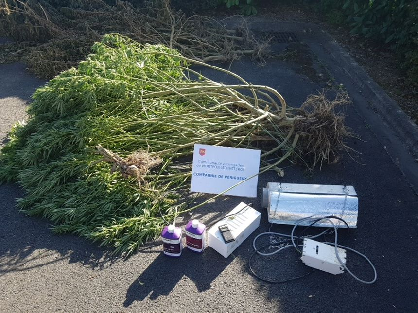 Les gendarmes ont également découvert du matériel pour faire pousser les plants