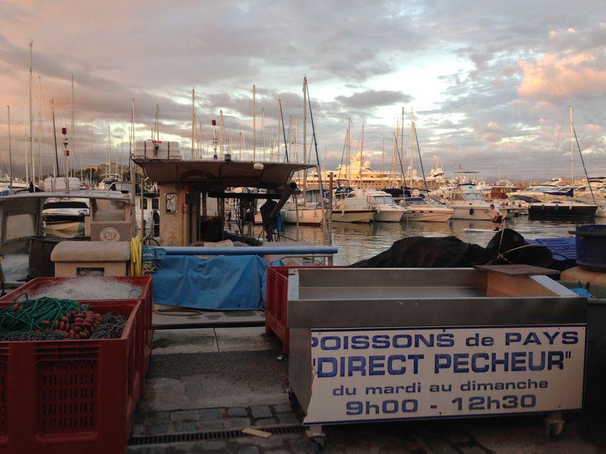 En direct avec les pêcheurs: le banc d'antibes