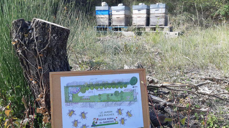 Les toutes premières ruches installées sur un terrain prêté par la mairie