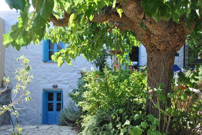 Depuis 2012, l'écrivaine Murielle Szac partage sa vie entre la France et la Crète, où elle a écrit 'Le Feuilleton d'Artémis'