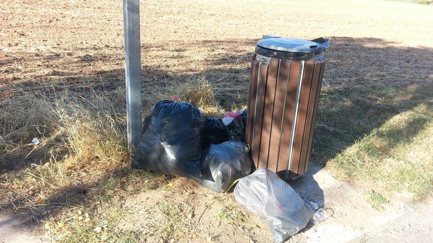 Les sacs poubelles sont déposés juste à côté de la poubelle et sont souvent éventrés par les animaux.