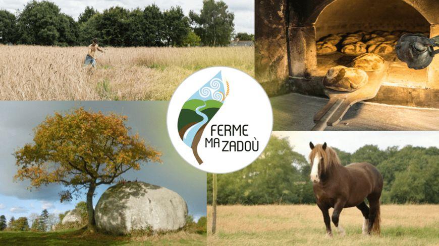 Ma Zadoù, le projet de ferme bio de Mikaël Charmeil
