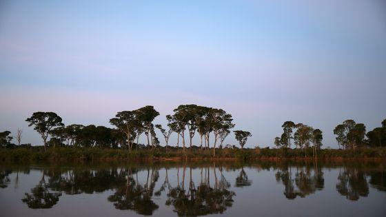 Une vue de la rivière Xingu dans le village de Kamayura au Brésil, d'où viennent le peuple Kuikuro