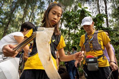 La jeune Ralyn Satidtanasarn, surnommée Lilly, participe le 25 août 2019 à un ramassage de déchêts plastiques à Bangkok, Thaïlande.