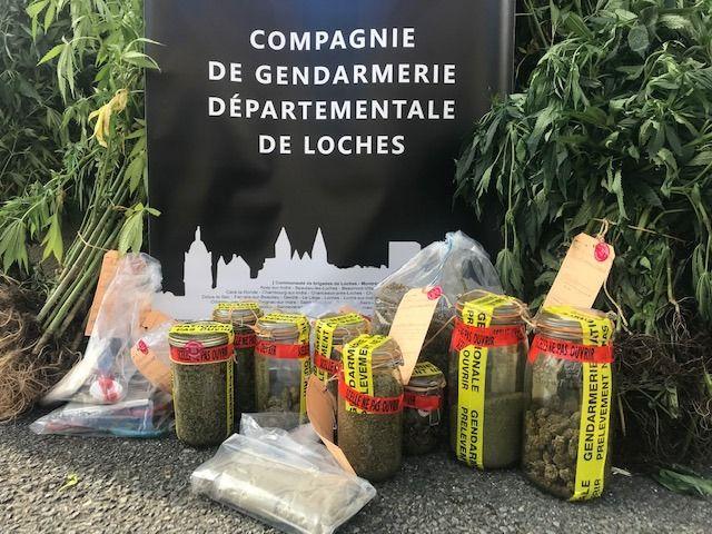 La saisie réalisée par les gendarmes du Grand Pressigny