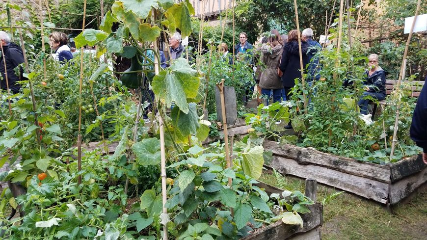 De nombreux visiteurs se pressent au Potagenêt pour observer ses cultures maraîchères biologiques.