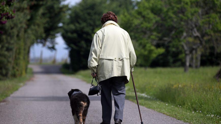 Une personne âgée marche sur un chemin avec une canne et un chien