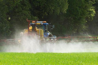 Le mot de la semaine : les pesticides