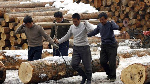 Épisode 2 : Commerce du bois : Pékin à l'assaut des forêts