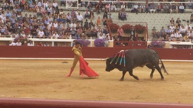 Le torero péruvien Joaquin Galdos a décroché une oreille face à l'ultime taureau de la Feria de l'Atlantique