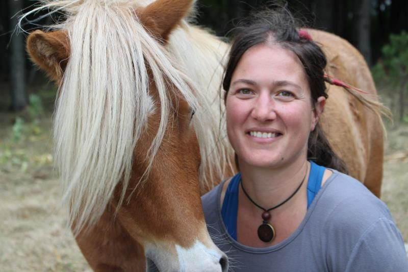 Marion Mountain Pony
