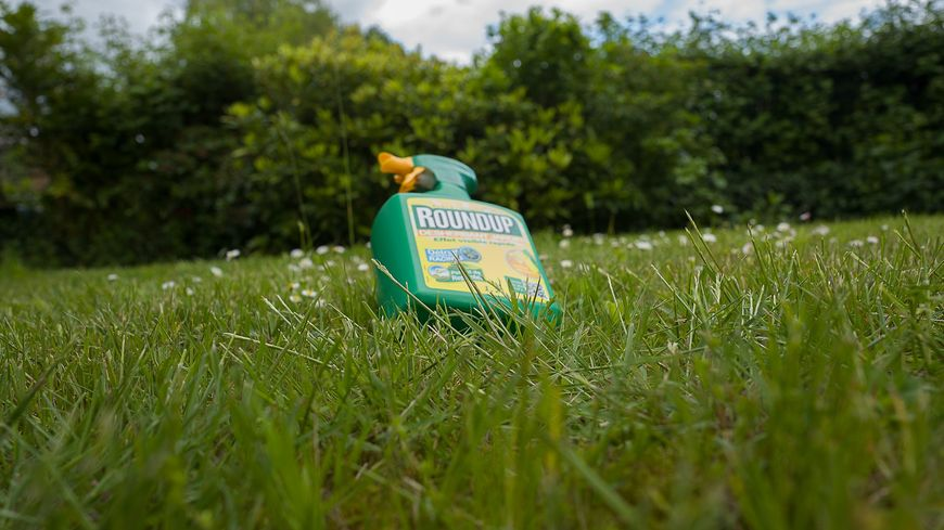 Photo d'illustration pesticides/glyphosate