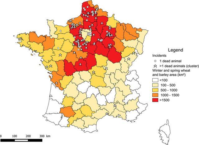 Cas suspects d'oiseaux empoisonnés entre 1995 et 2014, principalement localisés dans le centre-nord de la France, zones de culture intensive de céréales.